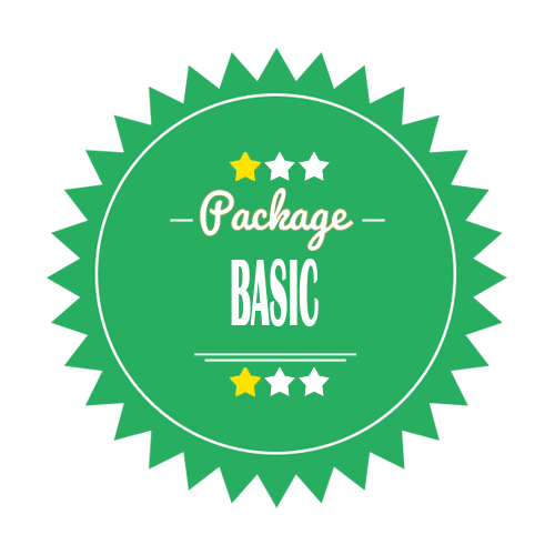 Basic Logo Design Package