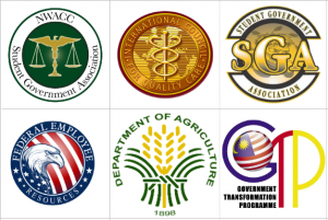 Custom Government Logo Design