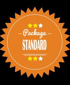 Standard Logo Design Package