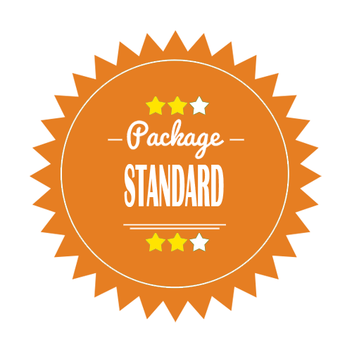 Standard Logo Design Package