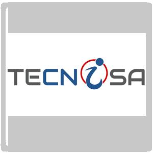 Tecnisa Logo Design