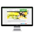 Clothing Ecommerce Website design Services