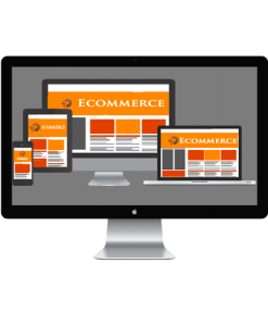 Ecommerce Website design Services